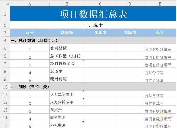 项目数据汇总表格