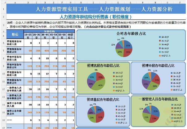 Excel人力资源年龄结构分析图表格