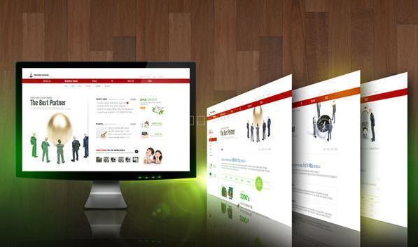 公司网站建立需确定什么要点